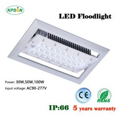 D300 LED Floodlight